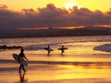 Surfers at Sunset, Gold Coast, Queensland, Australia Fotografie-Druck von David Wall