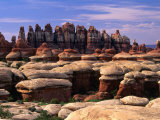 Chesler Park Trail in Needles Region, Canyonlands National Park, USA Photographic Print by Carol Polich