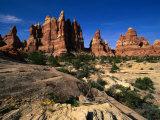 Chesler Park Trail in Needles Region, Canyonlands National Park, USA Fotografisk trykk av Carol Polich