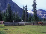 Log Cabin, Horse and Corral, Banff National Park, Alberta, Canada Photographic Print by Janis Miglavs