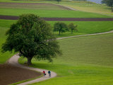 Bicycling in Basel Land, Jura Mountains, Switzerland Photographic Print by David Barnes