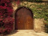 Doorway at Consolat de Mar, Palma de Mallorca, Balearics, Spain Photographic Print by Walter Bibikow