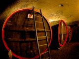Wine Barrels in the Cellar of Chateau de Cercy, Burgundy, France Photographic Print by Lisa S. Engelbrecht