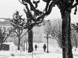 Winter, Mirabellgarten, Salzburg, Austria Photographic Print by Walter Bibikow