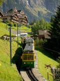 Jungfraujochbahn, Wengen, Lauterbrunnental, Switzerland Photographic Print by David Barnes