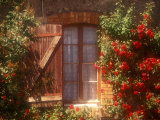 House with Summer Roses in Bloom, Vaucluse, France Photographic Print by Walter Bibikow