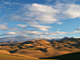 North Otago Landscape, South Island, New Zealand Photographic Print by David Wall