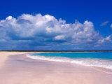 Pink Sand Beach, Harbour Island, Bahamas Fotografisk trykk av Greg Johnston