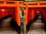 Torri Gates Lining Mountain Pathways at Fushimi-Inari, Kyoto, Japan Photographic Print by Frank Carter