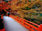 Bridge Leading to Saimyo-Ji, Kyoto, Japan Photographic Print by Frank Carter