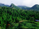Overhead of Forested Mountains and Cane Field, Nadi, Fiji Photographie par Peter Hendrie