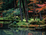Saiho-Ji Garden in Autumn, Kyoto, Japan Photographic Print by Frank Carter