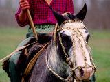 Gaucho on Horse, Buenos Aires, Argentina Fotodruck von Michael Coyne