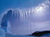 Icicles Hanging from Iceberg Near Browning Peninsula, Wilkes Land, Antarctica Photographic Print by Grant Dixon
