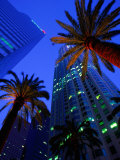 Citibank Center and Palm Trees from Below, Los Angeles, United States of America Lámina fotográfica por Cummins, Richard