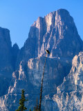 Perched Osprey (Pandion Haliaetus) and Castle Mountain, Banff National Park, Canada Photographie par David Tomlinson