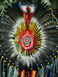 Detail of Cheyenne Headdress, USA Photographic Print by Carol Polich