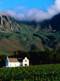Cape Dutch Colonial Manor House and Vineyard with Mountain Backdrop, Dornier, South Africa Photographic Print by Ariadne Van Zandbergen