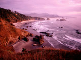 Overhead of Coastline, Cannon Beach, Evening, Ecola State Park, U.S.A. Photographic Print by Ann Cecil