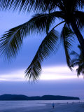Sunset on Palm Trees Lining Beachfront at Pantai Cenang, Malaysia Photographic Print by Glenn Beanland