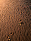 Footprints on Sand of the Erg Chebbir Dunes of Merzouga, Erg Chebbi Desert, Morocco Photographic Print by John Elk III