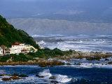 Storm Waves Lash Coast at Island Bay, Wellington, New Zealand Photographic Print by Paul Kennedy