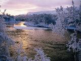 Snowy Riverscape, Vindelfjallen Nr, Umea, Sweden 写真プリント : クリステル・フレドリクソン