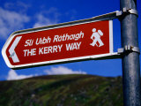 Kerry Way Signpost, Waterville, Ireland Photographic Print by Richard Cummins