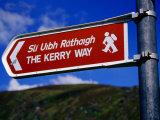 Kerry Way Signpost, Waterville, Ireland Photographic Print by Richard Cummins