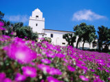 Flowerbed and Junipero Serra Museum, Presidio Park, Old Town, San Diego, United States of America Photographic Print by Richard Cummins