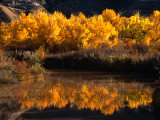 Autumn Colours of Drumheller Valley in Alberta, Drumheller Valley, Canada Photographic Print by Mark Newman