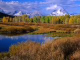 Trees and Lake During Autumn with Mt. Moran in Distance, Grand Teton National Park, USA Photographic Print by Carol Polich