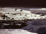 Surfers at Dawn Walking into Waves, Cabo Blanco, Peru Photographic Print by Paul Kennedy