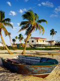 Skiff on Coral Beach Sand, Belize Photographic Print by Wayne Walton