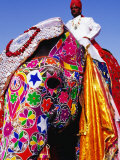 Entrant in Best Dressed Elephant Competition at Annual Elephant Festival, Jaipur, India Fotografisk tryk af Paul Beinssen