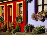 Cottage Facades Decorated with Flowers, Eyeries, Ireland Fotoprint van Richard Cummins