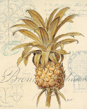 Artist's Pineapple Poster by Chad Barrett