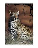 Sitting Leopard Prints by Rajendra Singh