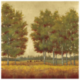 Line of Birches Posters by Jill Schultz McGannon