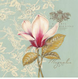 Toile Magnolia Prints by Stefania Ferri