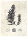 Filigree Fern Print by Devon Ross