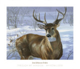 Through My Window: Whitetail Deer Posters par Joni Johnson-godsy