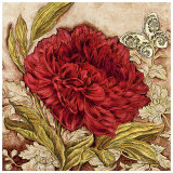 Antiqued Peony Prints by Laurel Lehman