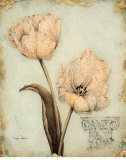 Tulip Recollection Posters by  Regina-Andrew Design