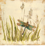 Dragonfly Meadow Posters by Bella Dos Santos