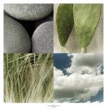 Desert Moods Prints by Jennifer Broussard