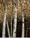 Shimmering Birches II Print by Arnie Fisk