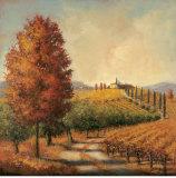 Hillside Vineyard Poster by Jill Schultz McGannon