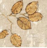 Natural Renewal Prints by James Wiens