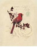 Filigree Cardinal Posters van Chad Barrett